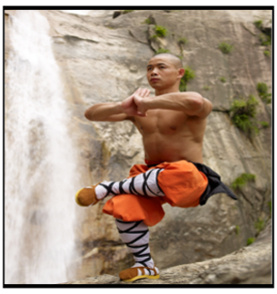 Buddhist Monks, with all of their mind-body connectedness talk, are really onto something.