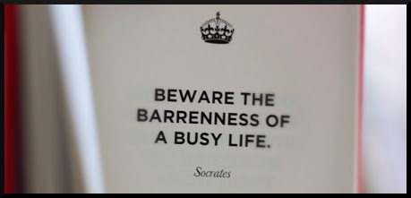 beware-the-barrenness-of-a-busy-life-books-quote
